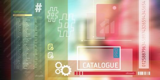 Création de site de catalogue pro